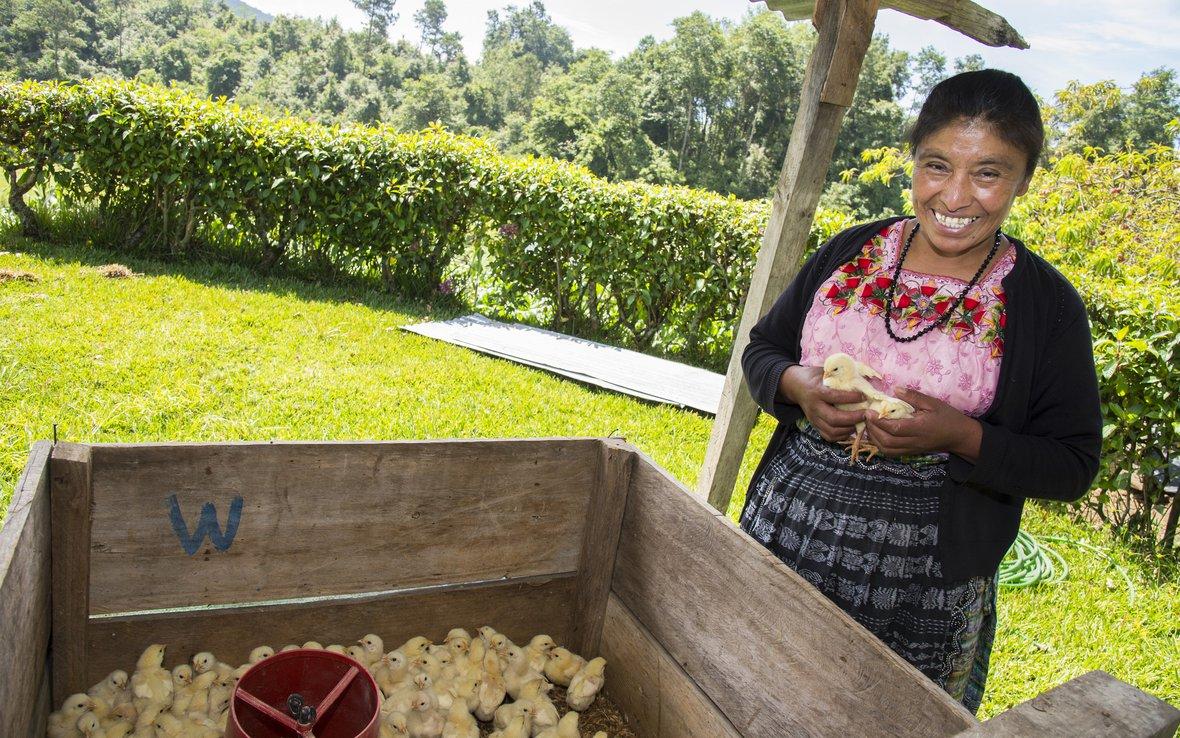 Mujer guatemalteca incursiona en negocio